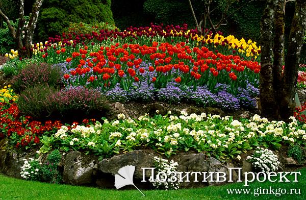Цвета в ландшафтном дизайне